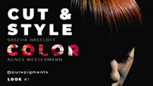 icono Agnes Westermann Haircolor Video Seminar Online Seminare für Friseure