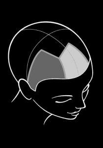Ausbildung Friseur Berlin icono Haarfarbe Step8